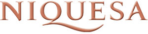 Niquesa Travel Logo